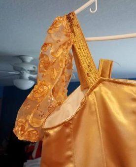 dangling sleeve on gold dress, Cinderella