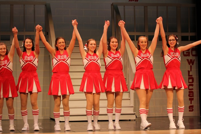 HSM Cheerleaders, costumecrazed.me